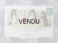 1910年代 アンティークポストカード 裁縫する子猫たち
