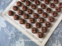 19世紀 アンティーク シルク製 くるみボタン 13mm 6ピースのセット チョコレートブラウン