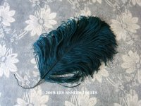19世紀末 アンティーク フェザー 深いブルーグリーン 羽飾り