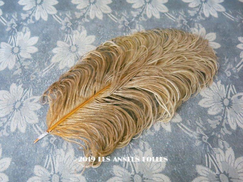画像1: アンティーク フェザー ゴールド & マスタード 羽飾り