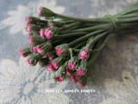 アンティーク デイジーの蕾の布花 52個のセット