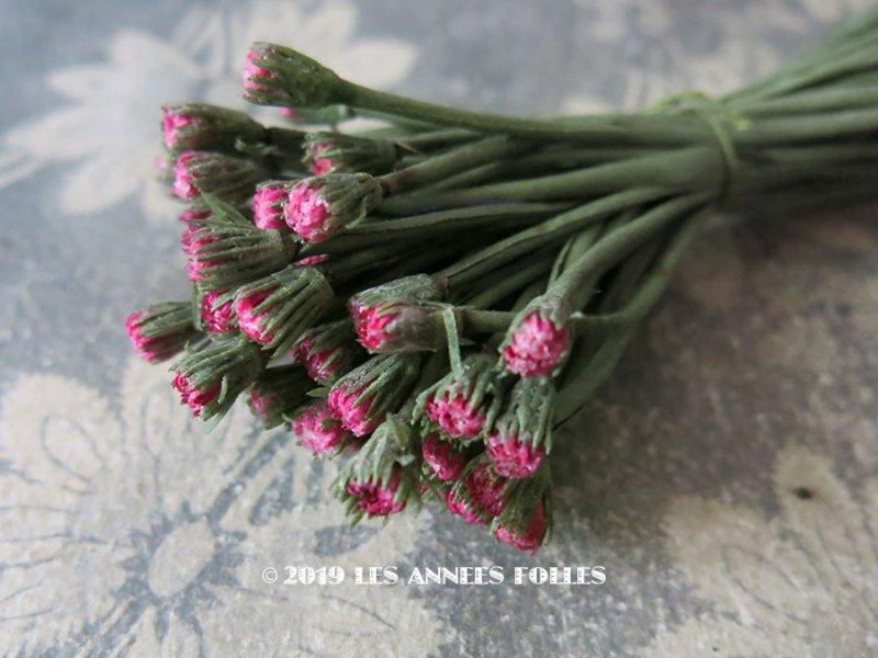 画像1: アンティーク デイジーの蕾の布花 52個のセット