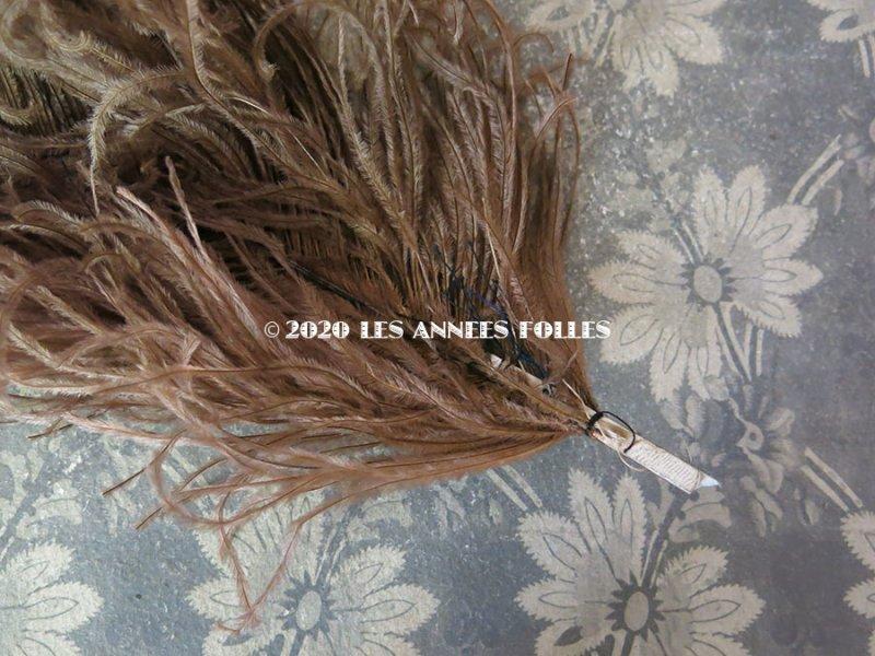 画像3: 1900年代 アンティーク フェザー ライトブラウン 羽飾り