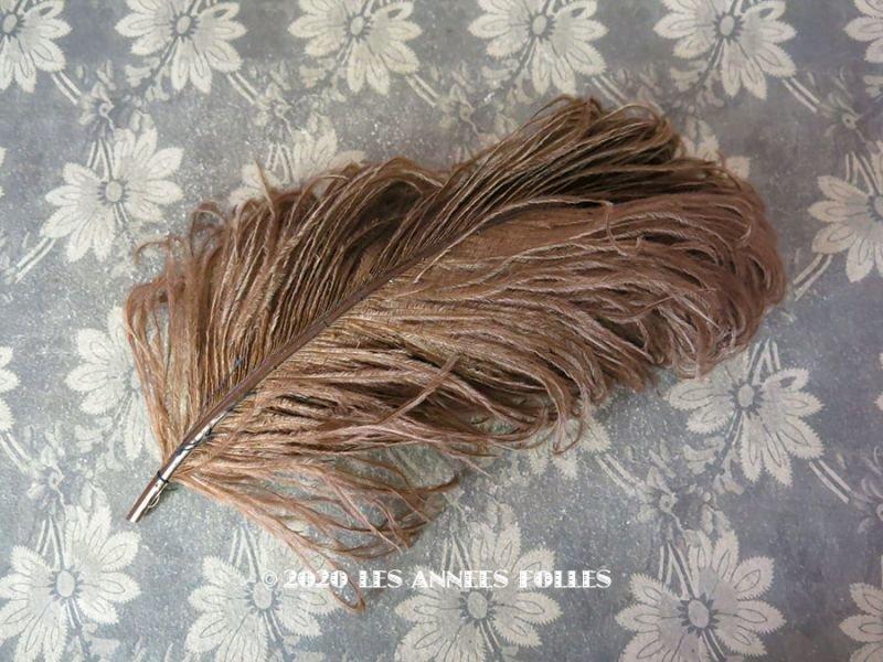 画像1: 1900年代 アンティーク フェザー ライトブラウン 羽飾り