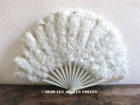 1900年代 アンティーク  ファン パウダーブルーのフェザー 白鳥の羽
